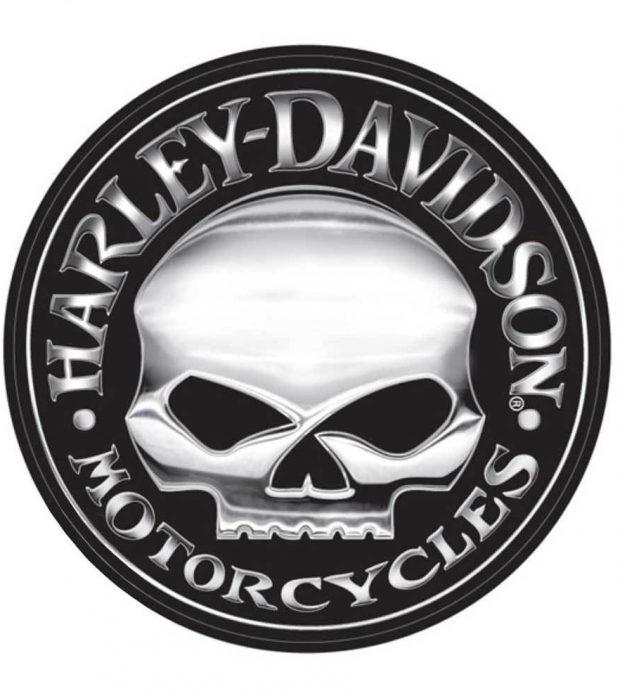 logo willy g skull